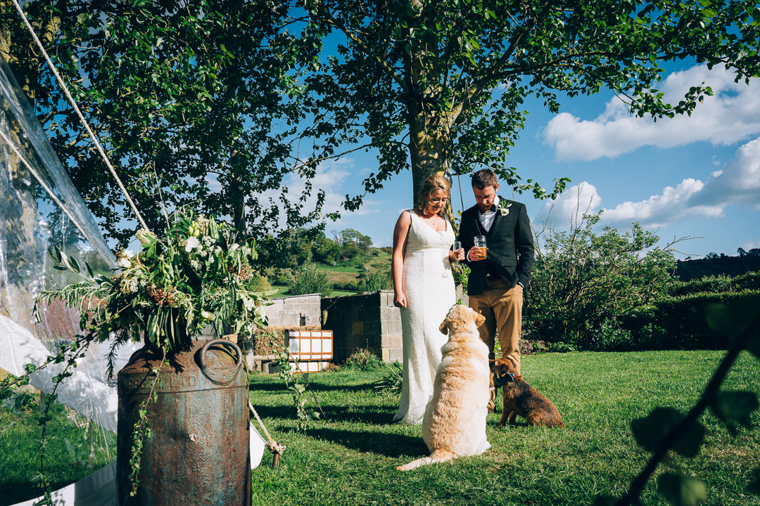 image of bride and groom and their dogs outside the marquee on their wedding day in the spring sunshine in Somerset